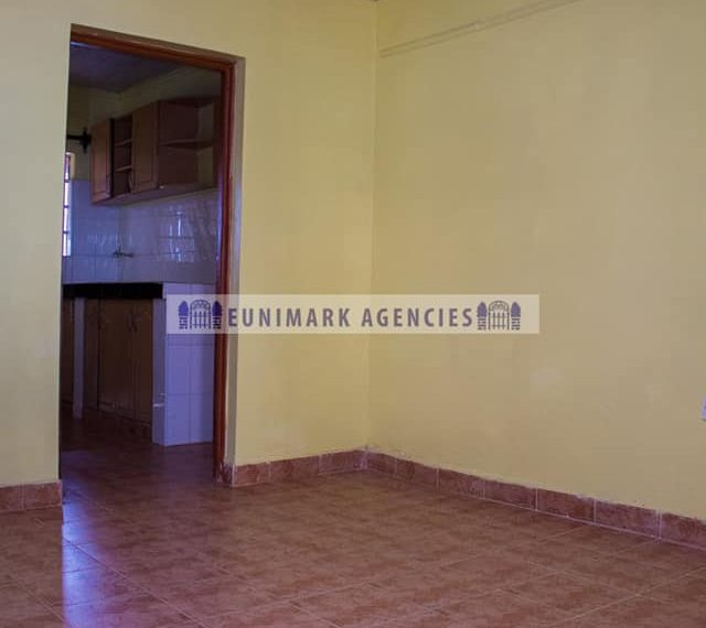 One Bedroom Apartment to Let (2)